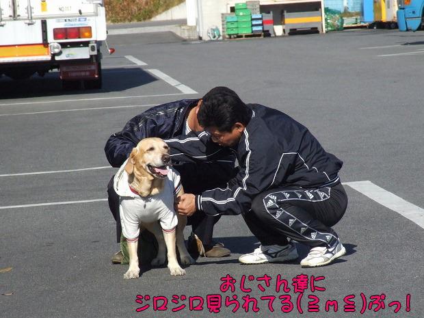 s-myu2008_1220(200)
