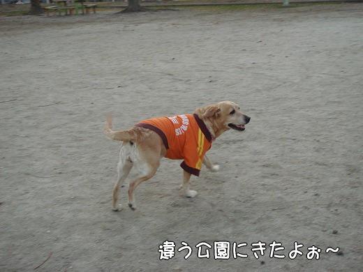 s-myu2008_1227(028)