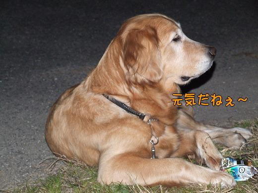 s-myu2008_1230(016)
