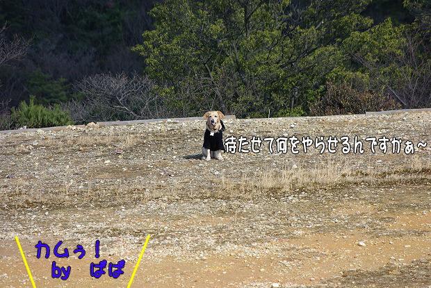 s-myu2009_0221(099)