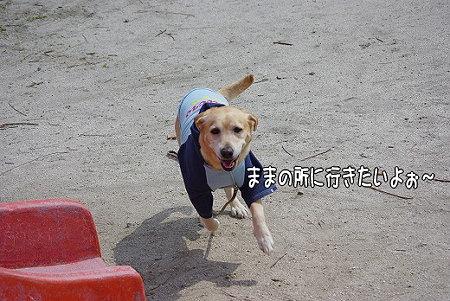 s-myu2009_0327(063)