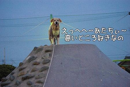 s-myu2009_0328(083)
