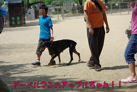 s-myu2009_0502(014)