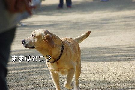 s-myu2009_0502(036)