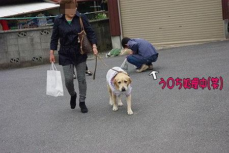 s-myu2009_0504(020)