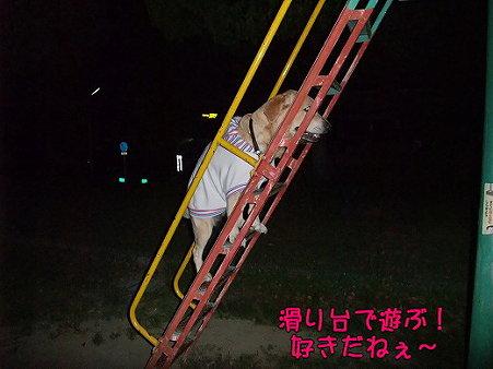 s-myu2009_0504(079)