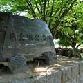 Photos: 新緑の槙島城址