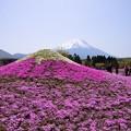 Photos: w富士♪