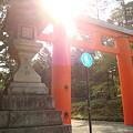 写真: 011.春日大社(1)