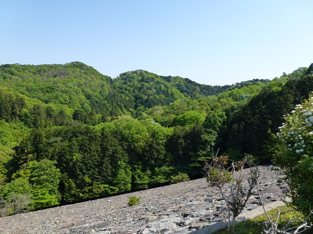 箕面駅 ~ 箕面滝 ~ 箕面川ダム ハイキング 20140510