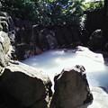 写真: 鶴の湯 外