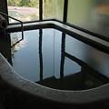 写真: 中山平温泉 琢秀うなぎ湯内湯