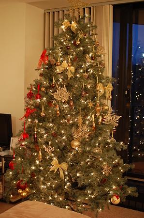 nyuちゃん宅にて クリスマスツリー