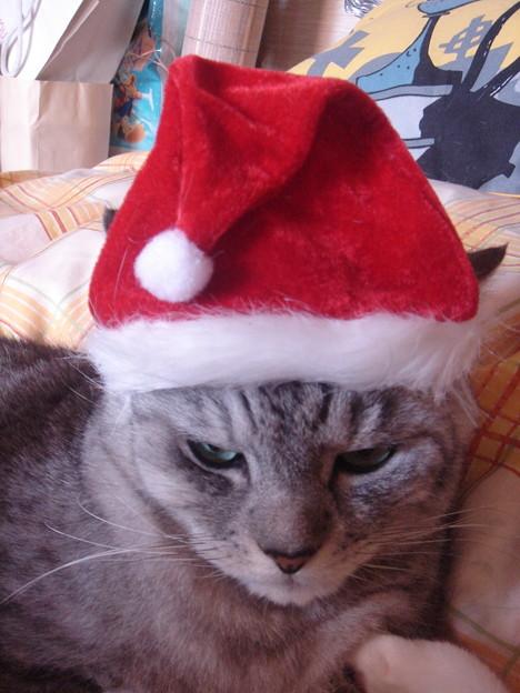2007クリスマス08