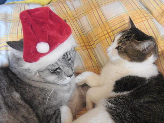 2007クリスマス09