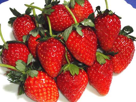 イチゴの画像 p1_21
