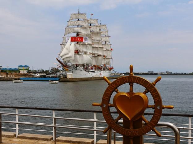 総帆展帆の帆船海王丸 IMG_9439