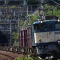 """Photos: 3075列車を牽引する原色""""EF64-1012号機"""""""