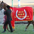 Photos: アジアエクスプレス_2(第65回 朝日杯フューチュリティステークス)