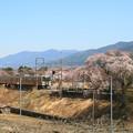 Photos: 春の飯田線(伊那本郷駅にて)1