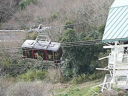 20090104-日本平山頂 (8)