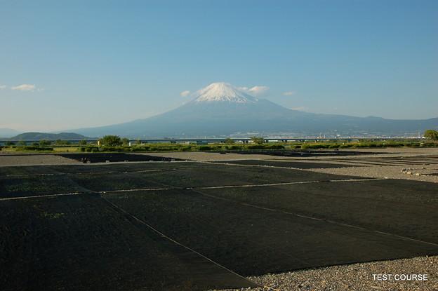 Photos: エビ干場