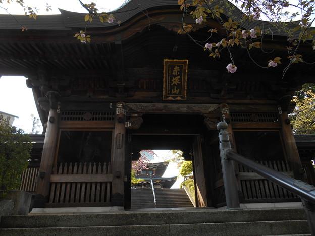 赤塚山山門
