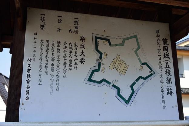 Photos: 龍岡城跡DSC_3471