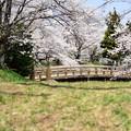 写真: 龍岡城跡DSC_3526