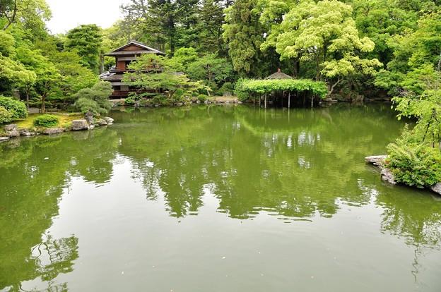 九條池と拾翠亭