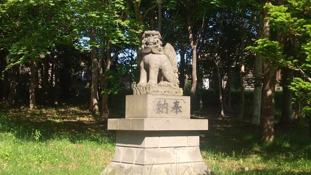 北海道開拓の村旧信濃神社DCIM0007