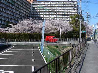 090410 162郵便車桜