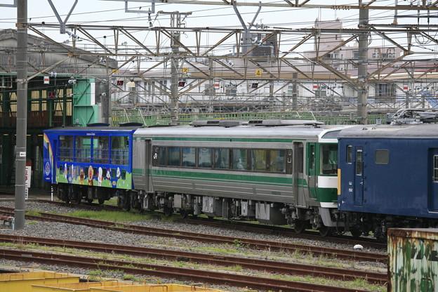 Photos: _MG_0194_MG_0193 アンパンマントロッコ列車(その2)