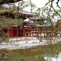 Photos: 源氏物語の里の世界遺産