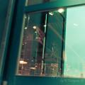 写真: 窓の中