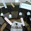 Photos: 風鈴まつり4260614c40