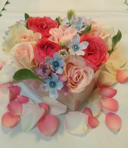 いろいろな薔薇たち……(8)