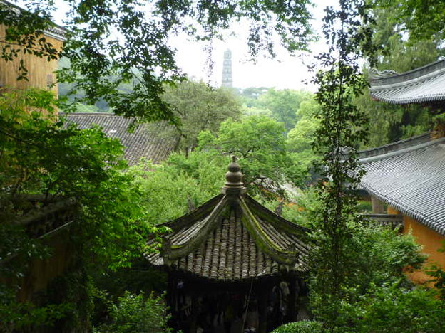 国清寺から隋塔遠望 Tall Pagoda through the trees