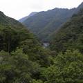 小丸川上流