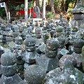 Photos: 2009.01.17 鎌倉 杉本寺 五輪塔群