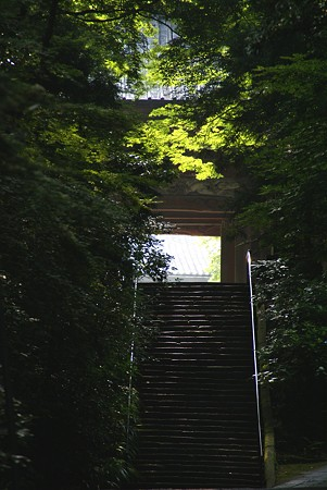 朝日のあたる山門