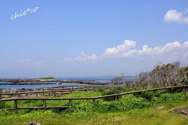 天神島臨海自然教育園-019