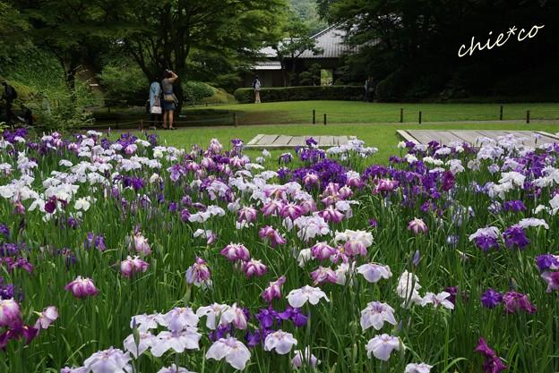北鎌倉-136