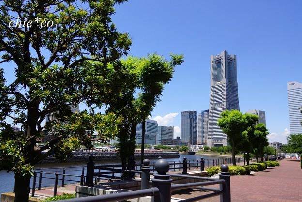 Yokohama-018