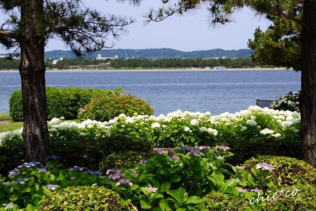 八景島-042