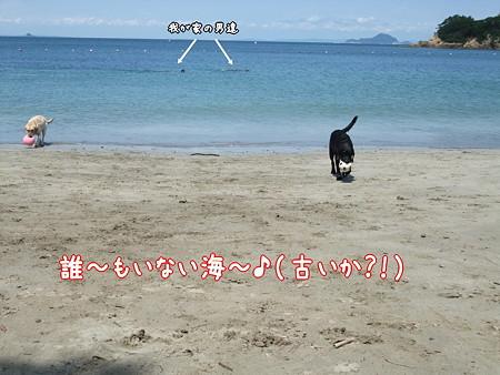 誰~も居ない海~♪