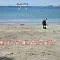 Photos: 誰~も居ない海~♪