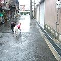 Photos: わー早く帰る~~~