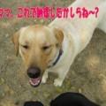 Photos: タッキーと9
