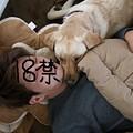 Photos: のど枕